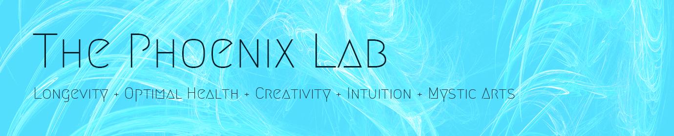 The Phoenix Lab